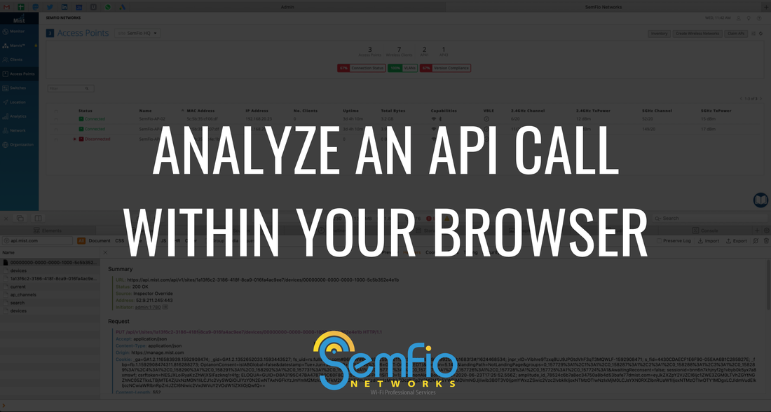 Analyze an API Call directly within your browser